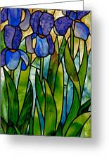 Alices Irises Greeting Card by David Kennedy