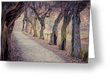 Alley - Square Greeting Card by Hannes Cmarits