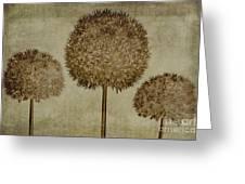 Allium Hollandicum Sepia Textures Greeting Card by John Edwards