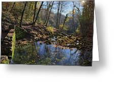 Allondon River Source Greeting Card by Patrick Jacquet