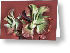 Aloe Design Greeting Card by Rosalie Scanlon