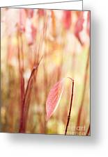 Alone Greeting Card by Anne Gilbert