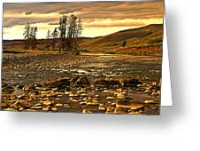 Along The Larmar River Greeting Card by Marty Koch