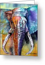Alpha Greeting Card by Maria Barry