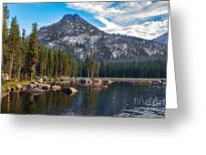 Alpine Beauty Greeting Card by Robert Bales