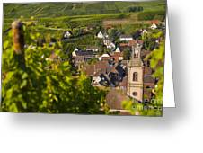 Alsace Morning Greeting Card by Brian Jannsen