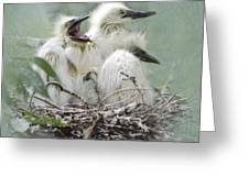 Always One In A Crowd Greeting Card by Betty LaRue