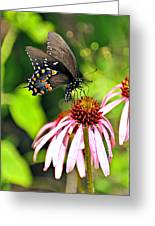 Amazing Butterfly Greeting Card by Marty Koch