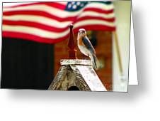 American Bluebird Greeting Card by Luana K Perez