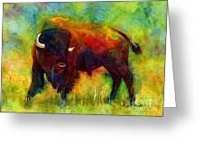 American Buffalo Greeting Card by Hailey E Herrera