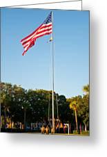 American Flag Greeting Card by Alexandr Grichenko