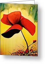 American Poppy Greeting Card by Kyle  Brock