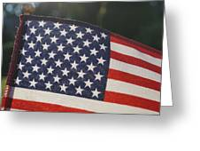 American Pride Greeting Card by Andrea Rea