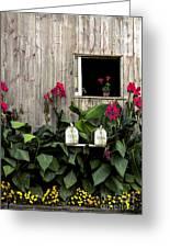 Amish Barn Greeting Card by Diane Diederich