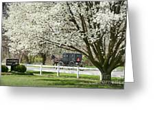 Amish Buggy Fowering Tree Greeting Card by David Arment