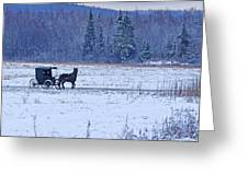 Amish Carriage Greeting Card by Jack Zievis