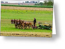 Amish Farmer Greeting Card by Guy Whiteley
