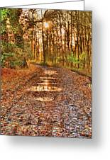 An Autumn Track Greeting Card by Dave Woodbridge