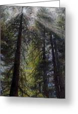 An Enchanted Forest Greeting Card by Mary Giacomini