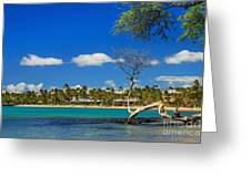 Anaehoomalu Bay Greeting Card by James Eddy