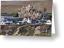 Ancient Sea Stack At Pismo Beach Above Motels Greeting Card by Susan Wiedmann