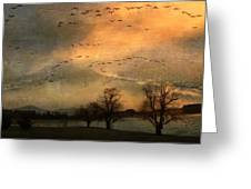 And They Flew Away Greeting Card by Kathy Jennings