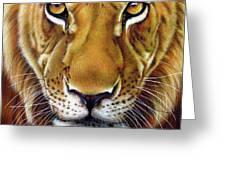 Andre Lion Greeting Card by Jurek Zamoyski