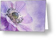 anemone Greeting Card by Priska Wettstein