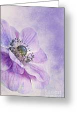 Anemone Greeting Card by Priska Wettstein