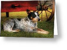 Animal - Dog - Always Faithful Greeting Card by Mike Savad