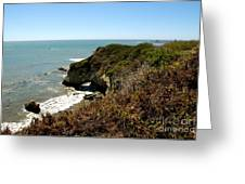 Ano Nuevo Greeting Card by Lisa Schafer