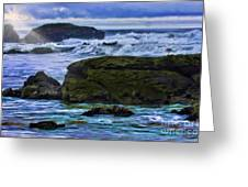 Ano Nuevo Seagull Greeting Card by Blake Richards