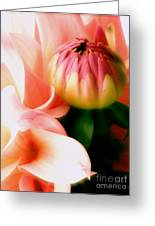 Anticipation Greeting Card by Rory Sagner