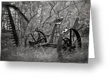 Antique Field Mower Greeting Card by Mary Lee Dereske