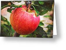 Apple On The Tree Greeting Card by Andee Design