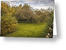 Apple Orchard Greeting Card by Amanda And Christopher Elwell