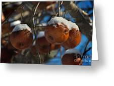 Apple Sorbet Greeting Card by The Stone Age