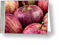 Apples 02 Greeting Card by Nailia Schwarz