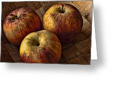 Apples Greeting Card by Steve Purnell