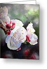 Apricot Flowers Greeting Card by Irina Sztukowski