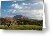 April Showers And New Green Of Spring Rockville Utah Greeting Card by Robert Ford