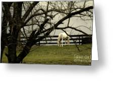 April Showers Greeting Card by Cris Hayes