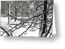 April Snow Greeting Card by Kay Novy