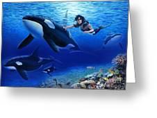 Aquaria's Orcas Greeting Card by Stu Shepherd
