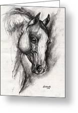 Arabian Horse Drawing 12 Greeting Card by Angel  Tarantella