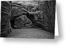 Arches National Park Black And White Greeting Card by Bob and Nadine Johnston