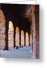 Arches Of The Roman Coliseum Greeting Card by Jan Moore