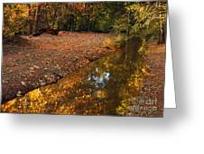 Arizona Autumn Reflections Greeting Card by Mike  Dawson