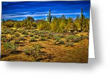 Arizona Landscape Iv Greeting Card by David Patterson