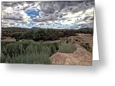Arizona Rain Greeting Card by Joyce Isas